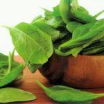 Làm ngót mỡ thừa hiệu quả bằng những món ăn từ rau ngót